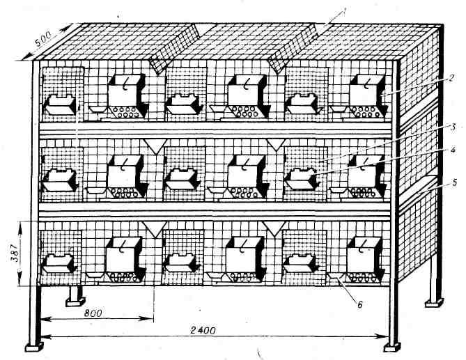 Кролиководство для начинающих клетки своими руками
